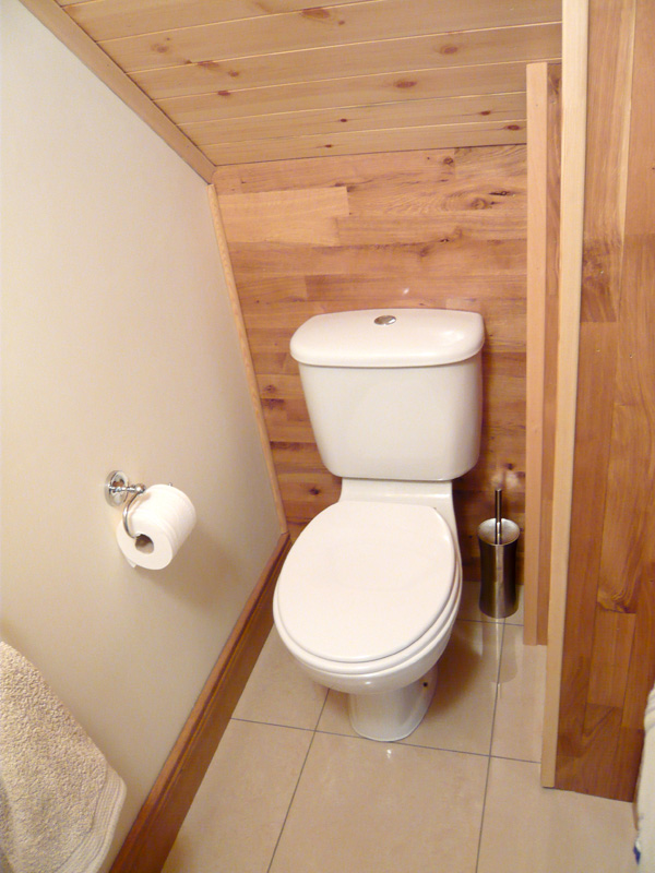 Under Stairs Toilet Understairs Toilet Downstairs Toilet Dublin