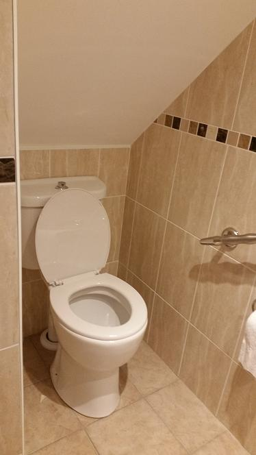 Understairs Amp Downstairs Toilets Dublin Home Healthcare